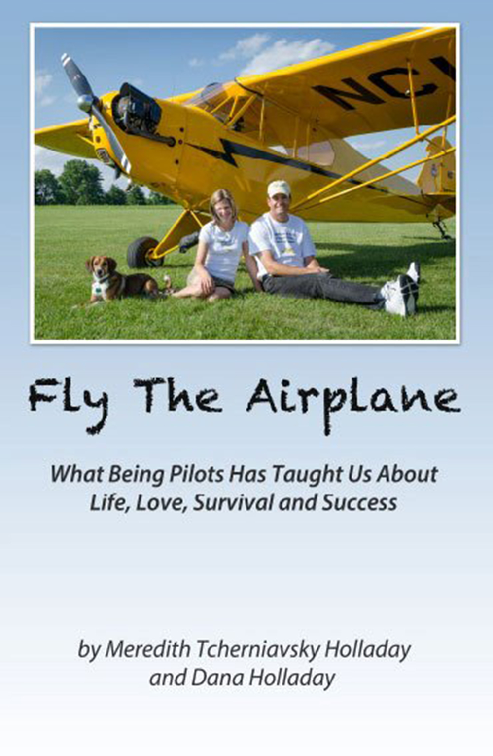 Book Cover: Fly the Airplane