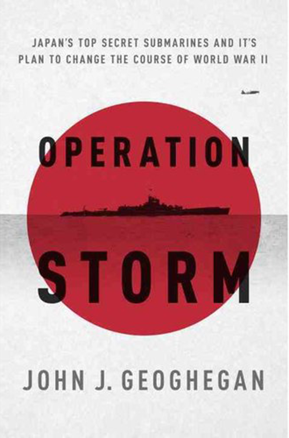 Book Cover: Operation Storm