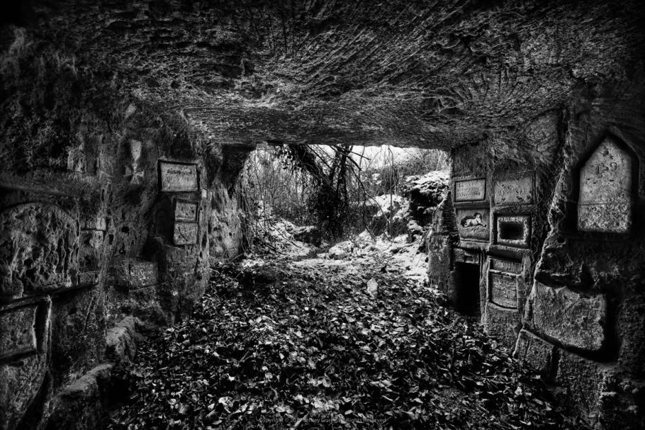 A view from inside a tunnel looking out.