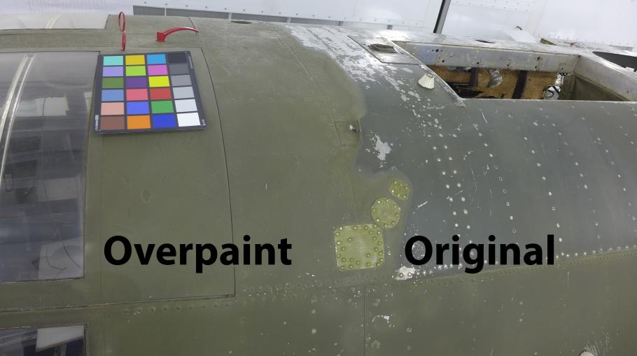 Flak-Bait paint removal