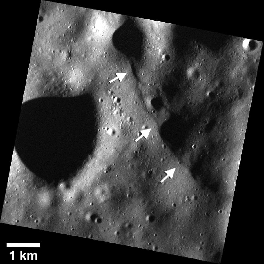 Small Scarps on Mercury