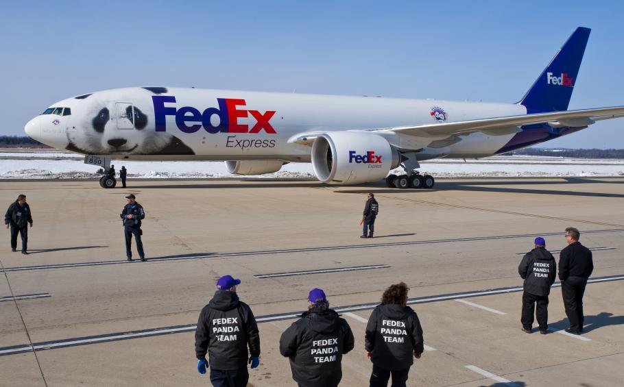 Panda Plane & Crew Awaits Transport of Tai Shan
