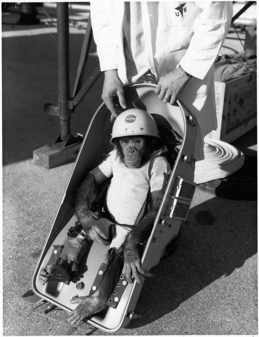 NASA launched the chimpanzee Ham on a suborbital flight in January 1961.