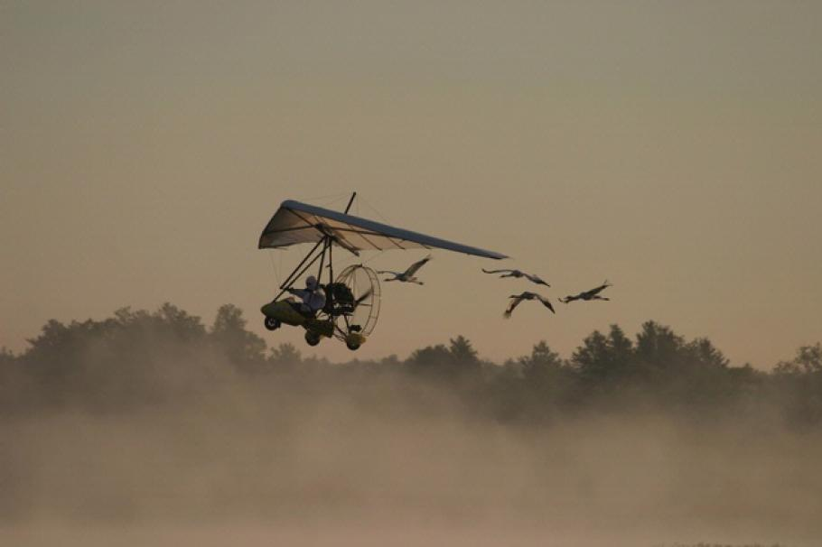 Operation Migration Ultralight with Whooping Cranes