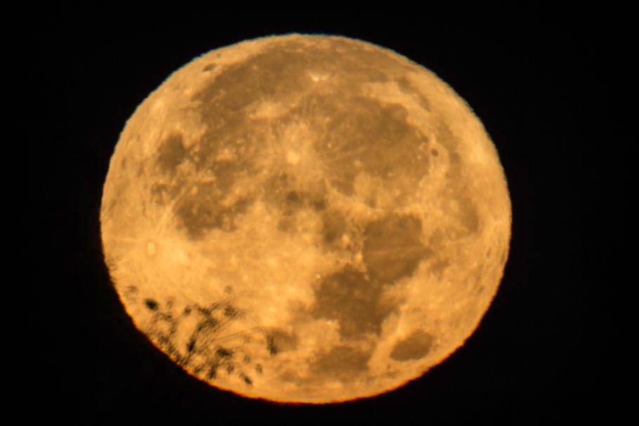 Moon takes up the complete frame and appears orange.