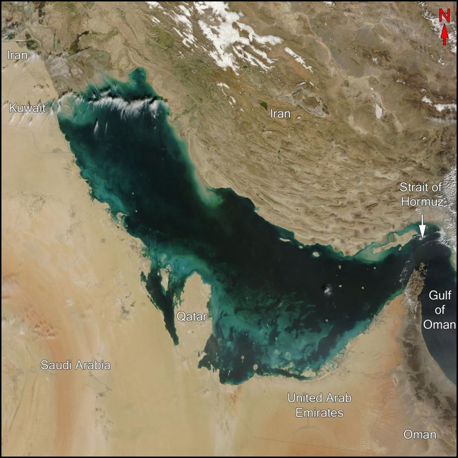 An orbital image of the Persian Gulf.