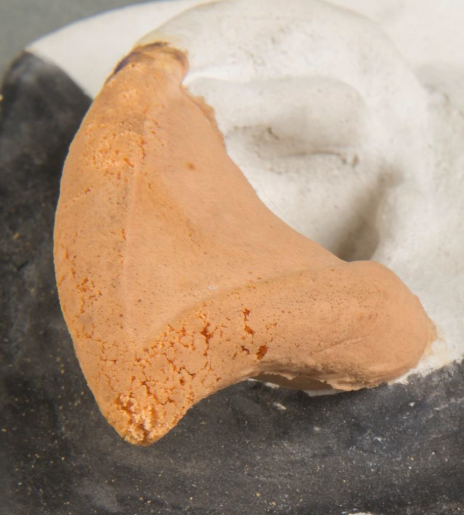 Close Up of Spock Ear
