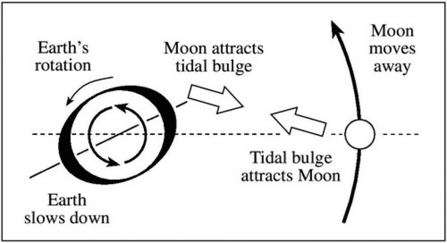 Black and white diagram.