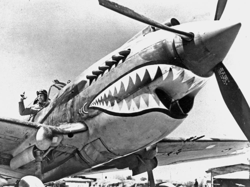 Curtiss P-40 Warhawk Shark Nose Art