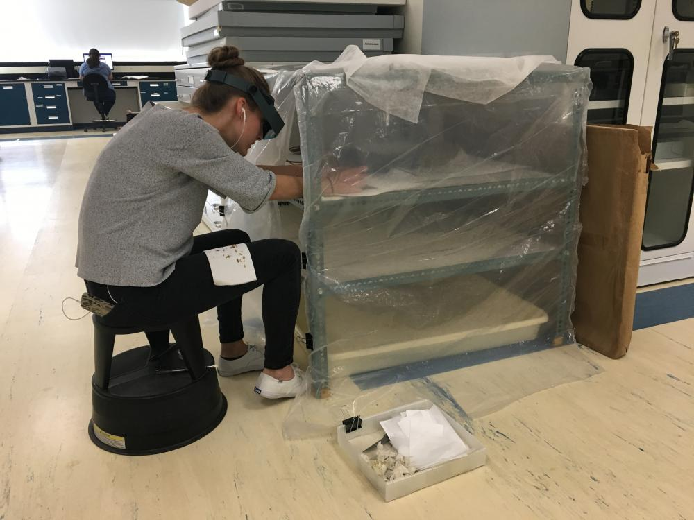 Carolyn Burns working on the kite while it was in the humidification chamber, which helped promote removal of stubborn tape adhesive
