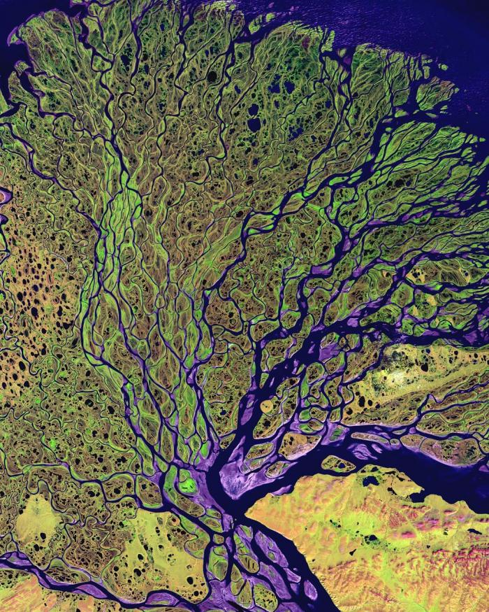 Earth from Space--Lena Delta
