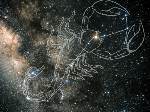 Photo of constellation with scorpion overlaid