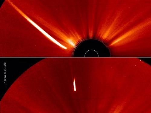 Comet Lovejoy Survives A Close Encounter with the Sun