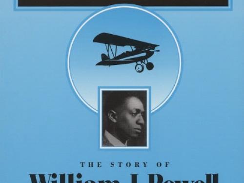 Book Cover: Black Aviator