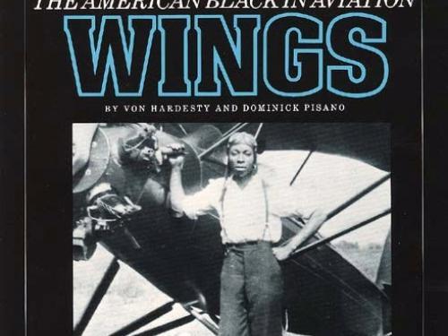 Book Cover: Black Wings