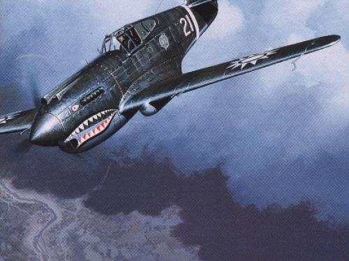 Book Cover: Flying Tigers