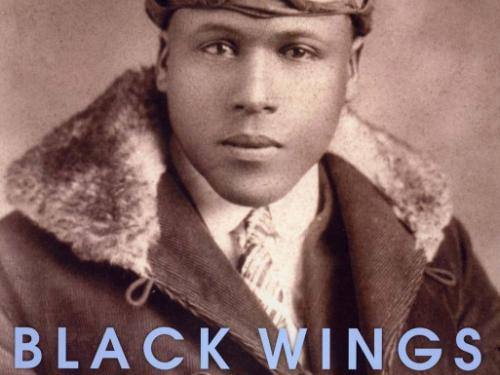 Book cover: Black Wings: Courageous Stories