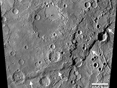 Mercury's Enterprise Rupes
