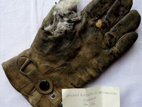 Günter Rall's Glove