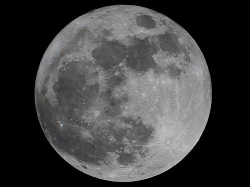 The year's first full moon is sometimes known as the Wolf Moon.