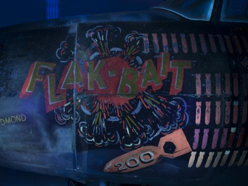 Flak-Bait Details in UV Light