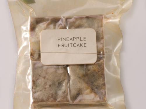 Apollo Space Food Pineapple Fruitcake