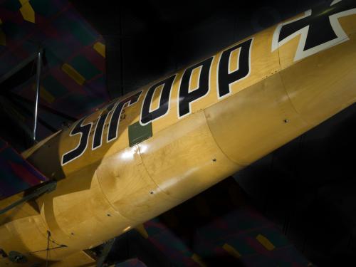 Albatros D.Va (A19500092000)