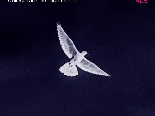 Under Ancient Skies Album Cover
