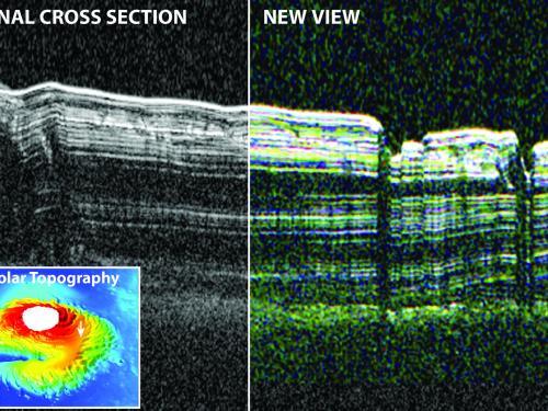 SHARAD radar cross-section