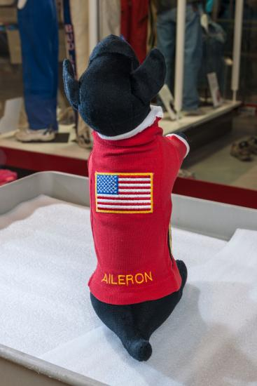 The top of Aileron's sweater with an embroidered US flag and his name in yellow.