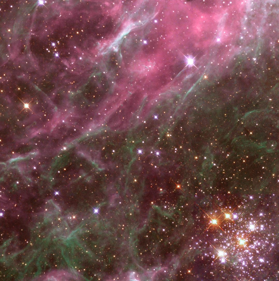 Stars in the Tarantula Nebula