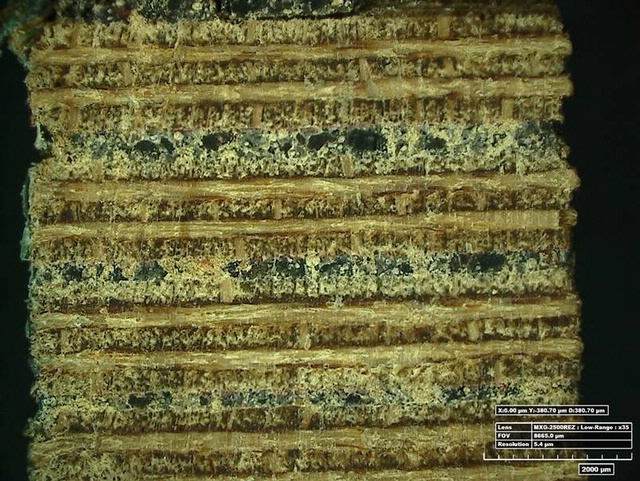 Horten Conservation - Plywood Photomicrograph