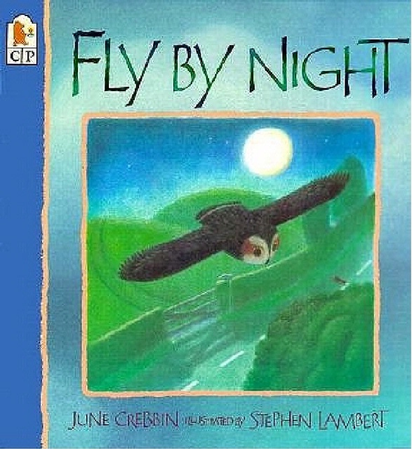Book Cover: Fly By Night