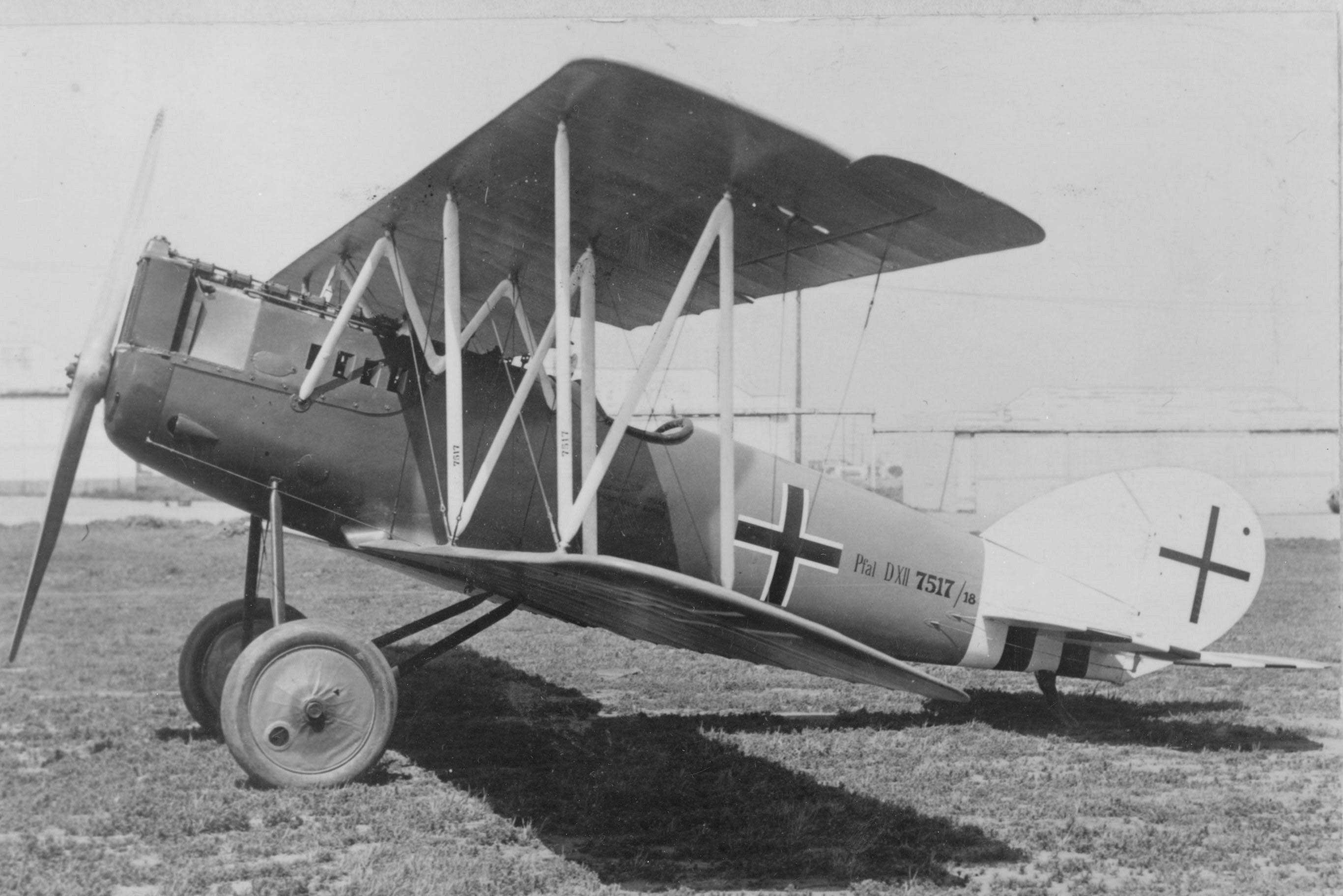 Image of : Pfalz D.XII