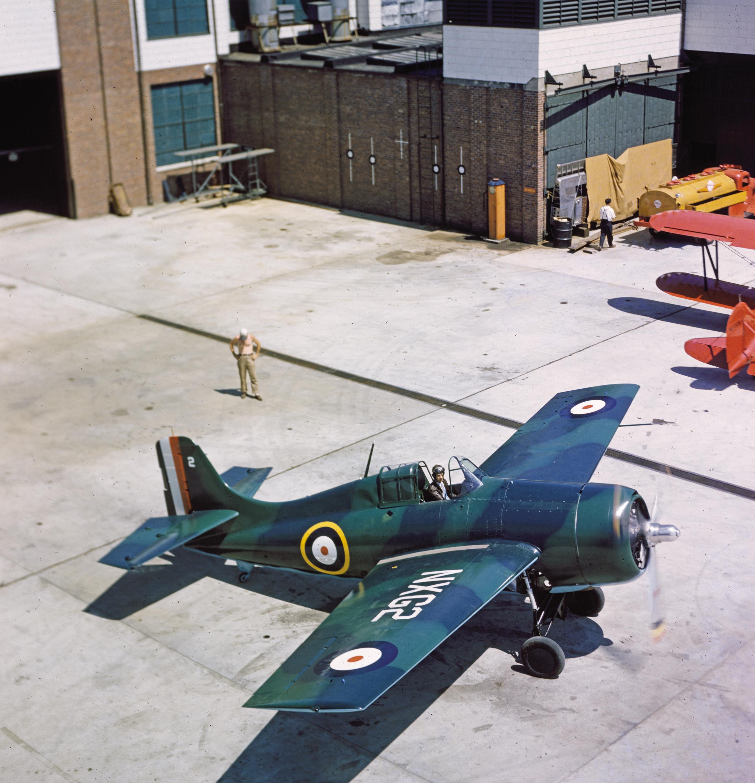 Image of : Grumman FM-1 (F4F-4) Wildcat