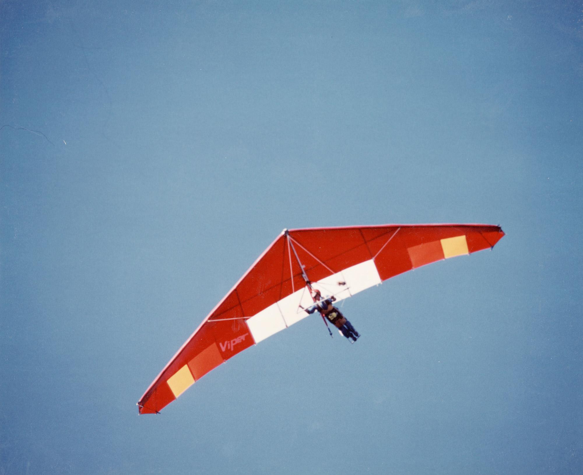 Image of : Delta Wing Phoenix Viper 175