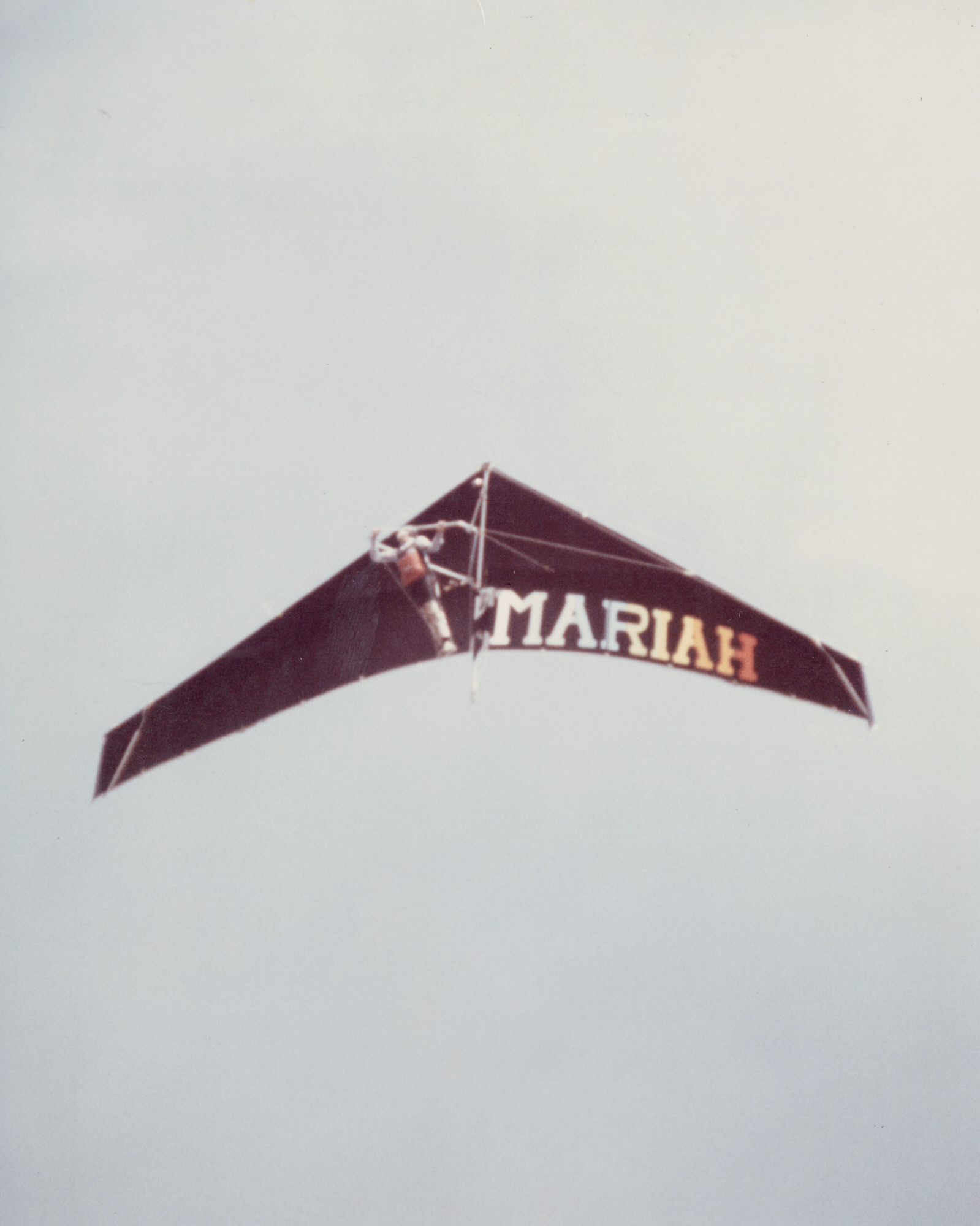 Image of : Delta Wing Phoenix Mariah M-9