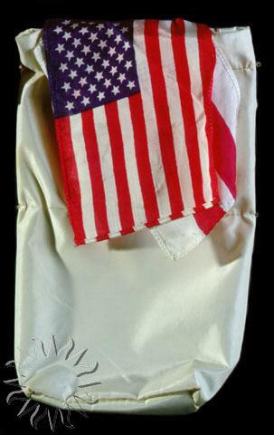 Image of : Flag, United States of America, Apollo 11