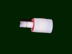 Image of : Ampule, Chlorine, Apollo 11