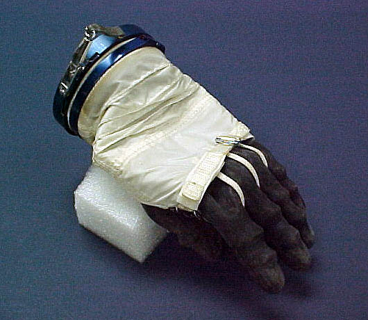 Image of : Glove, Space Suit, Dennis Tito, Left