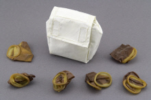 Image of : Pouch, Storage, with Roll-on Urine Cuffs, Collins, Apollo 11