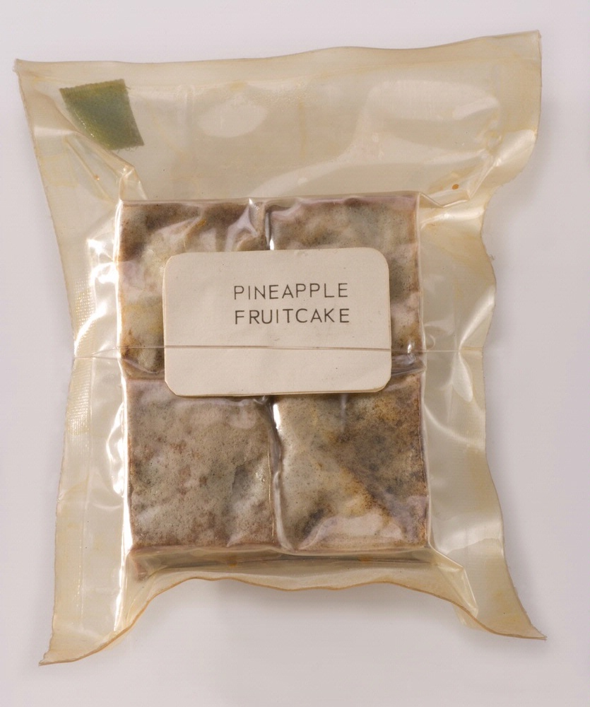 Apollo Space Food Pineapple Fruitcake