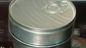 Skylab Space Food Turkey and Gravy