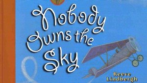 Book Cover: Nobody Owns the Sky