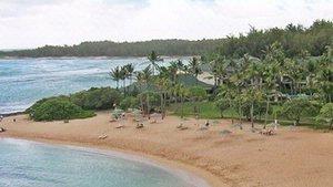 The Waikikis Hawaii Beach Party